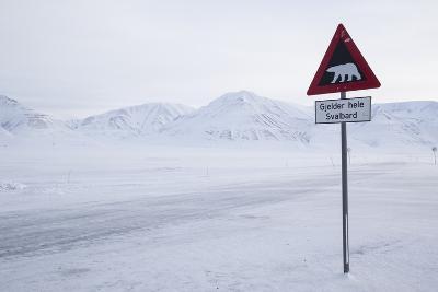 Beware of Polar Bear Traffic Sign on Ice Road-Stephen Studd-Photographic Print