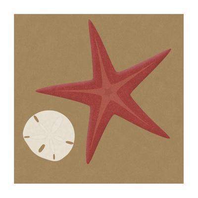Summer Fun: Starfish