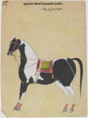 The Stallion Jukaldan Ayragi, C.1730
