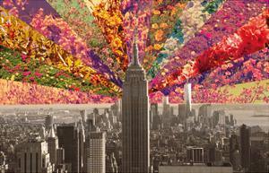Flowers of New York by Bianca Green
