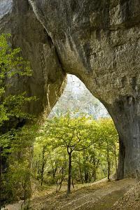 Karstic Rock Arch in the Korana Canjon, Plitvice Lakes National Park, Croatia, October 2008 by Biancarelli