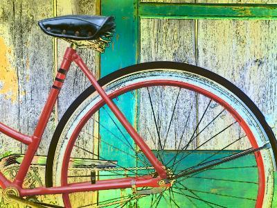 Bicycle Resting Against Colorful Barn Door--Photographic Print