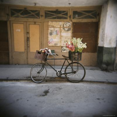 Bicycle with Flowers in Basket, Havana Centro, Havana, Cuba, West Indies, Central America-Lee Frost-Photographic Print