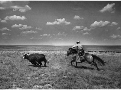 Biffin Ranch-Alfred Eisenstaedt-Photographic Print