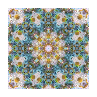 Big Acre Flower Mandala-Alaya Gadeh-Art Print