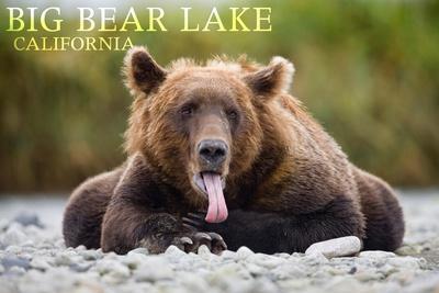https://imgc.artprintimages.com/img/print/big-bear-lake-california-grizzly-bear-with-tongue_u-l-q1gqneu0.jpg?p=0