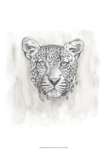 Big Cat Study IV-Grace Popp-Art Print