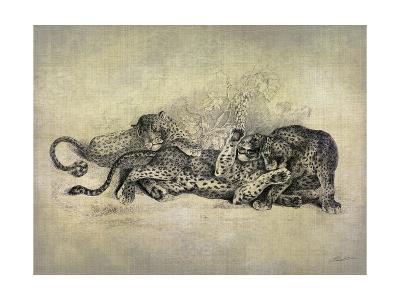 Big Cats I-John Butler-Art Print