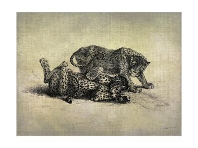 Big Cats II-John Butler-Art Print
