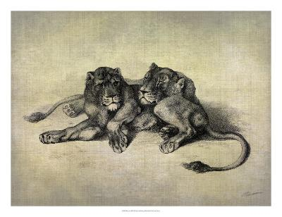 Big Cats III-John Butler-Giclee Print