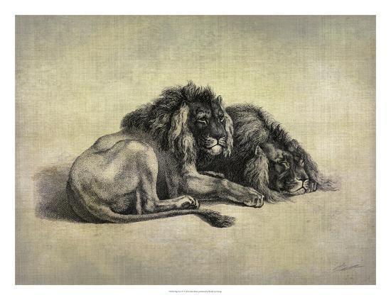 Big Cats IV-John Butler-Giclee Print