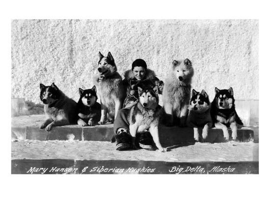 Big Delta, Alaska - Mary Hansen and Siberian Huskies-Lantern Press-Art Print