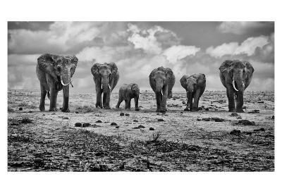 Big Family-Marcel Rebro-Art Print