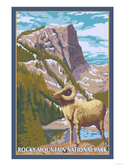 Big Horn Sheep, Rocky Mountain National Park-Lantern Press-Art Print
