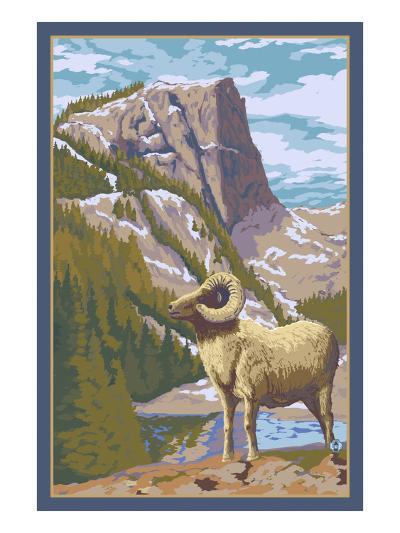 Big Horn Sheep-Lantern Press-Art Print
