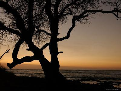 Big Island of Hawaii - Sunset from Beach-Keith Levit-Photographic Print