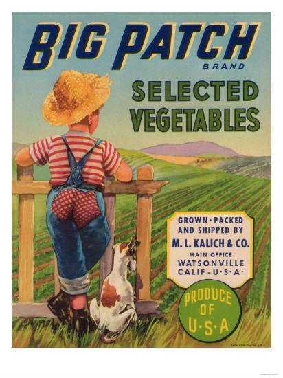 Big Patch Vegetable Label - Watsonville, CA-Lantern Press-Art Print