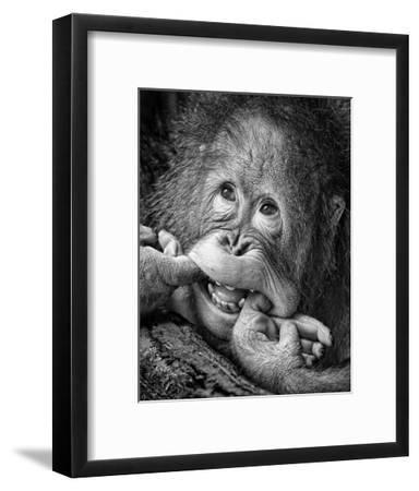 Big Smile..Please-Angela Muliani Hartojo-Framed Giclee Print