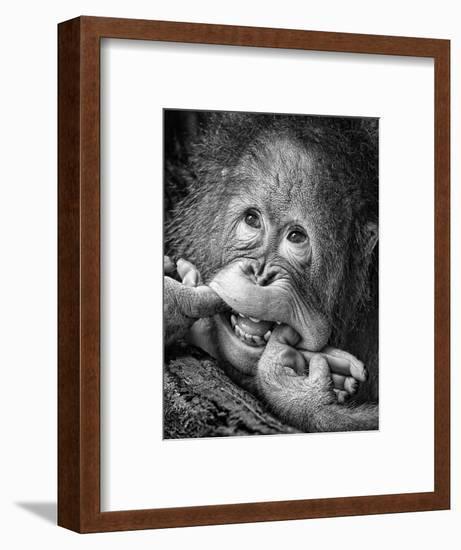Big Smile.....Please-Angela Muliani Hartojo-Framed Photographic Print