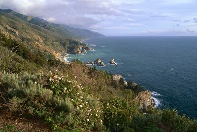 Big Sur Coast Springtime Vista, California-George Oze-Photographic Print
