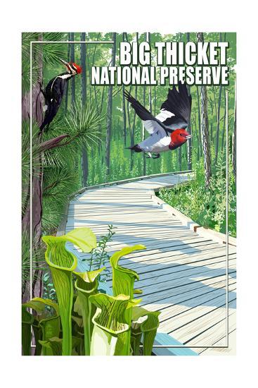 Big Thicket National Preserve, Texas-Lantern Press-Art Print