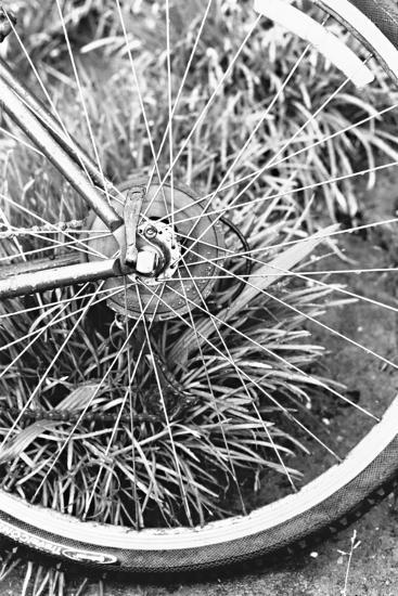 Bike Spoke-Karyn Millet-Photographic Print