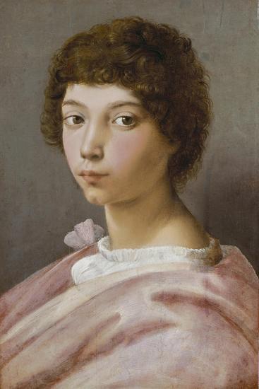 Bildnis des Alessandro Medici-Raffael Raffaello Sanzio-Giclee Print