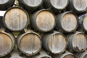 Barrels of wine, Kunde Winery, Sonoma Valley, California by Bill Bachmann