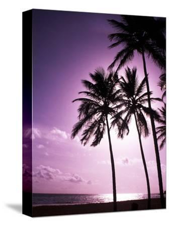 Beach Scene at Sunset