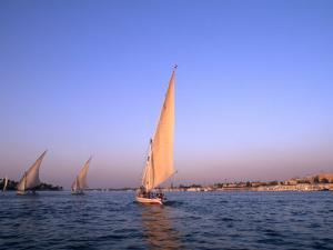 Beautiful Sailboats Riding Along the Nile River, Cairo, Egypt by Bill Bachmann
