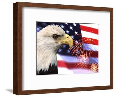 Eagle, Firework, Patriotism in the USA