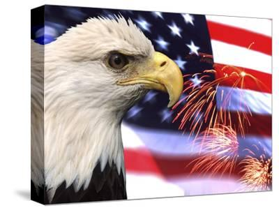 Eagle, Firework, Patriotism in the USA