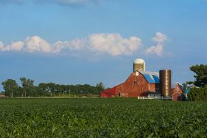 Farm with Red Barn and Corn, Milford Center, Ohio by Bill Bachmann