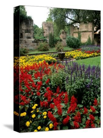 Flower Gardens in Old Town by Rhine River, St Kastor Church, Koblenz, Germany