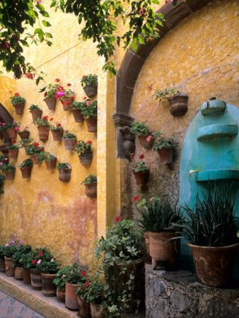 Flowers and Architecture in San Miguel de Allende, Mexico