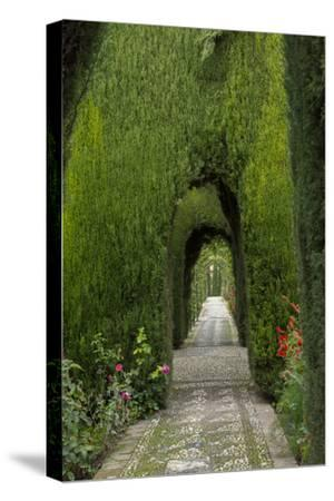 Granada, Spain, Alhambra, Famous Hedges of Gardens of the Generalife
