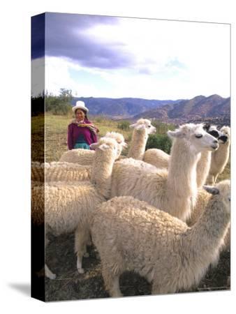 Inca Woman in Costume with Llamas, Cuzco, Peru