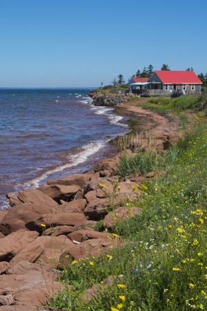 Prince Edward Island, Prim Point Shore and Waves with Red Roof House in Summer with Wildflowers