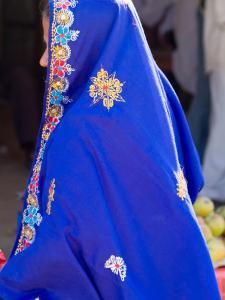 Sari Woman, New Delhi, India by Bill Bachmann