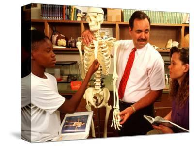 Students with Teacher Examining Skeleton in 7th Grade Science Class