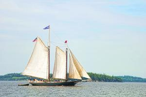 Windjammer Schooner called the Stephen Taber, Rockland, Maine, USA by Bill Bachmann