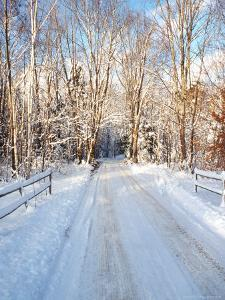 Winter Road in New England by Bill Bachmann