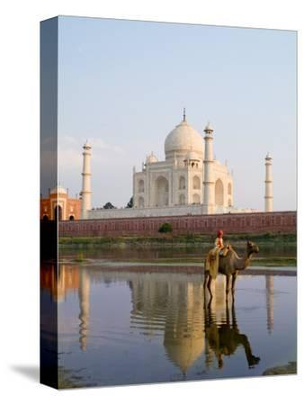 Young Boy on Camel, Taj Mahal Temple Burial Site at Sunset, Agra, India