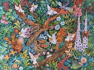 Flower Fairies by Bill Bell