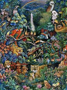 Rainbow Rainforest by Bill Bell