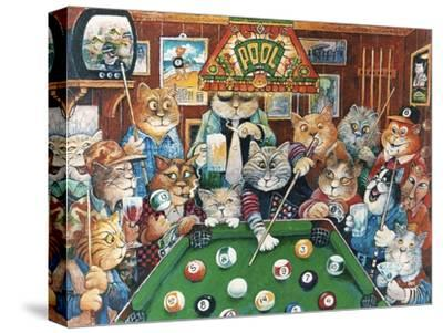 The Hustler (Pool Cats)