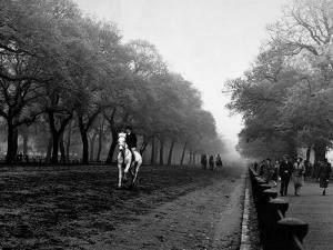 Rider on Horseback in Hyde Park by Bill Brandt