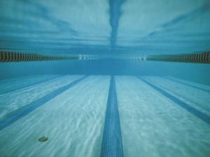 A Below-The-Surface View of a Swimming Pool by Bill Curtsinger