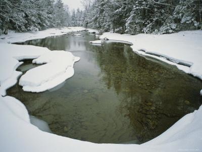 A Snowy Woodland View with Creek and Evergreens