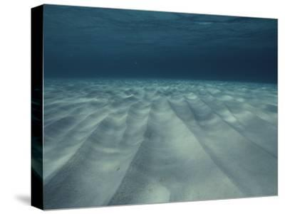 Current-Sculpted Ripples in the Sandy Sea Floor off of Grand Cayman